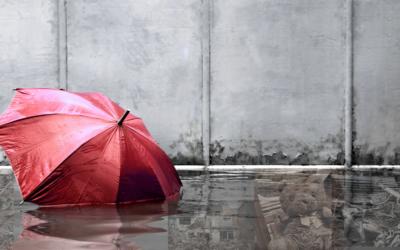 Die unsichtbaren Flutkatastrophenopfer